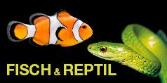 Fisch & Reptil