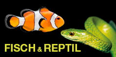 Messe Fisch & Reptil